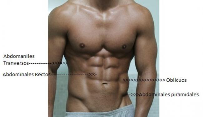 dieta para perder peso y ganar masa muscular mujer